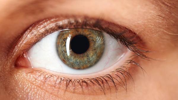 Para evitar enfermedades oculares es importante una consulta oftalmológica al año (iStock)
