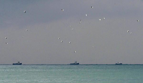 Los barcos de rescate durante las operaciones de búsqueda de los restos del avióneste domingo (EFE)