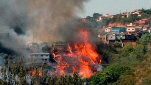Las llamas arrasaron con 50 hectáreas de bosque